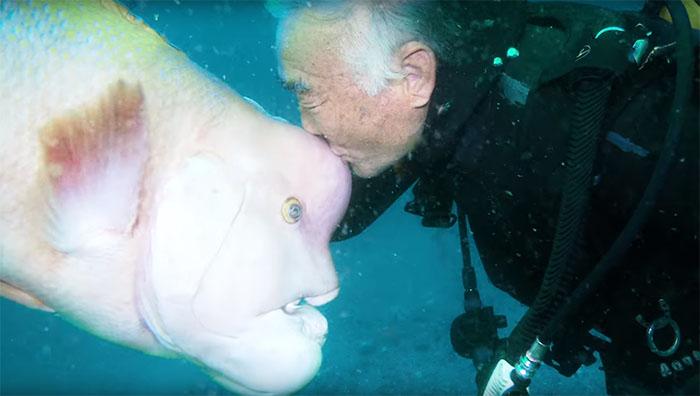 Un hombre y un pez son amigos durante 25 años