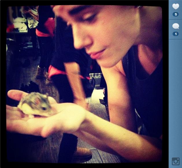 #RIPpac. Muere el hamster de Justin Bieber