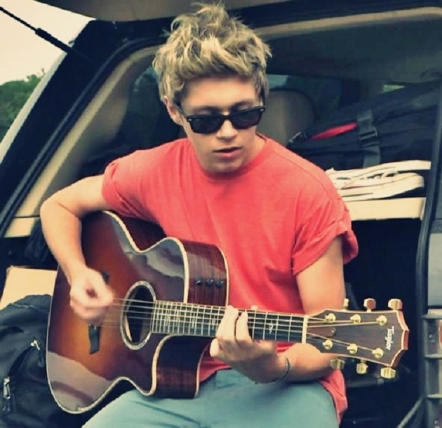 Niall Horan 2013 Photoshoot Niall Horan toc...