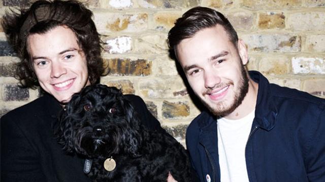 Liam Payne y Harry Styles hospitalizados