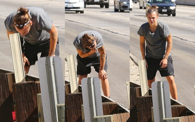 ¿Por qué Harry Styles vomitó en la carretera?