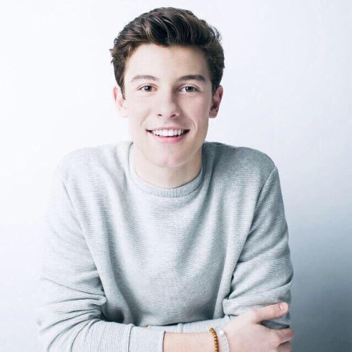 """Shawn Mendes estrena videoclip para """"Life of the Party"""""""