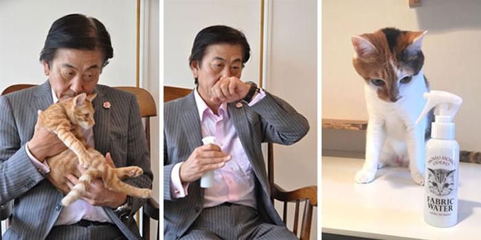 El olor de la cabeza de los gatos, muy cotizado en Japón