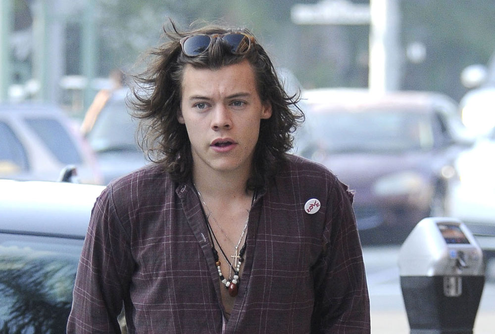 Harry Styles ¿en un reality?