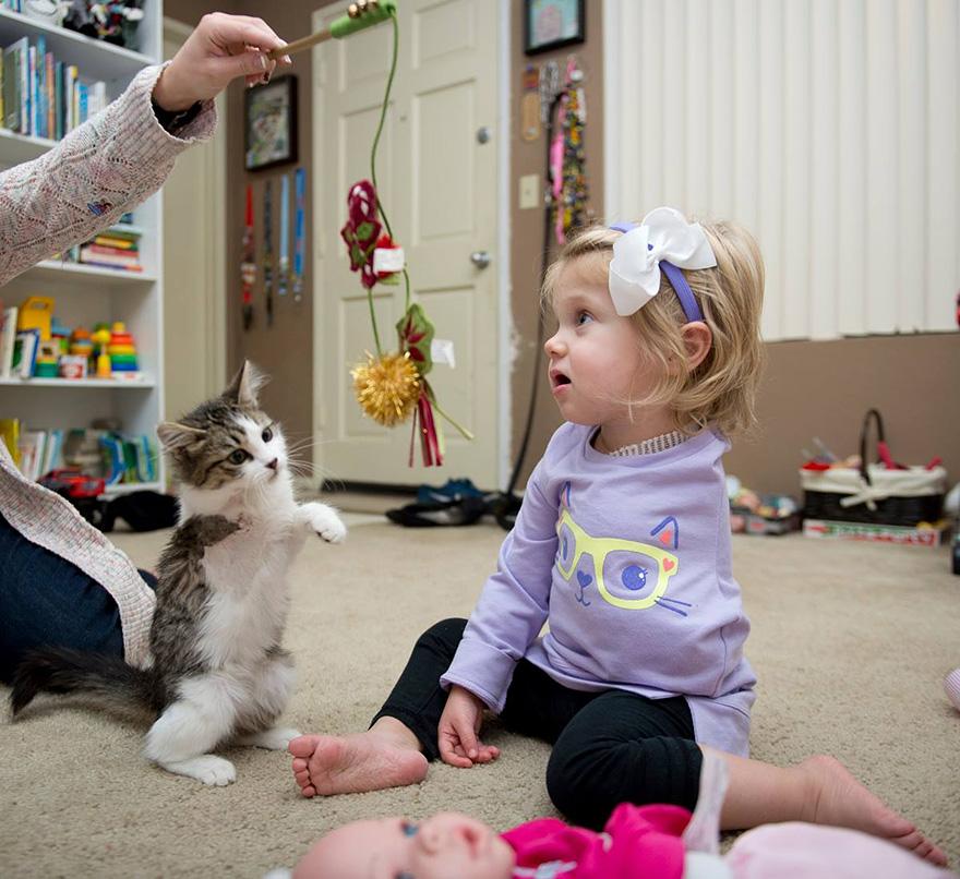 La pequeña Scarlette adopta un gato muy especial