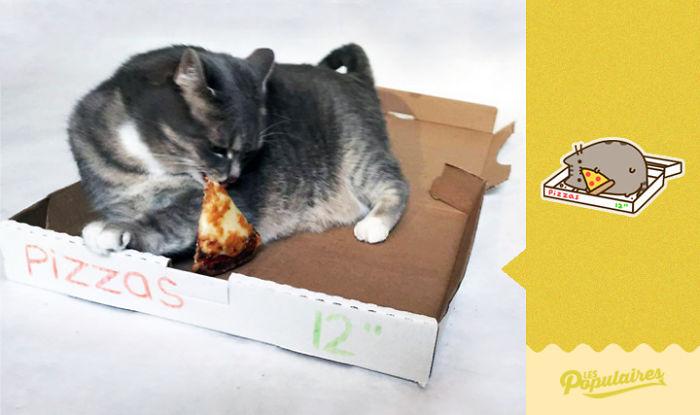 Hace fotos a su gato convirtiéndolo en el famoso emoji, Pusheen
