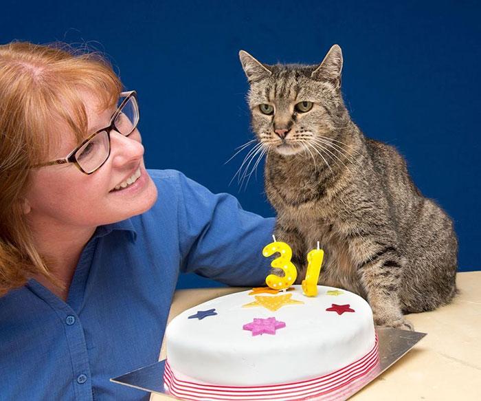 el gato mas viejo del mundo cumpleaños