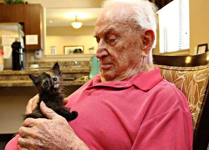 ancianos cuidando de gatitos