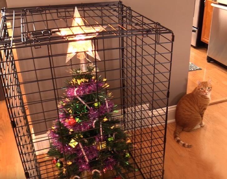 mascotas y arboles de navidad