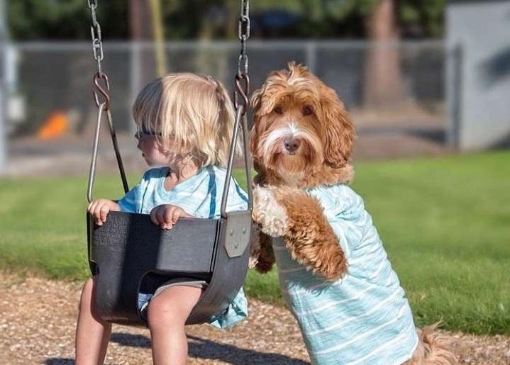 niño y perro calendario
