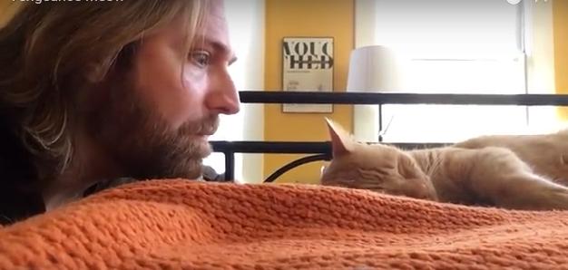 El vídeo viral de un chico vengándose de su gato por despertarle cada noche