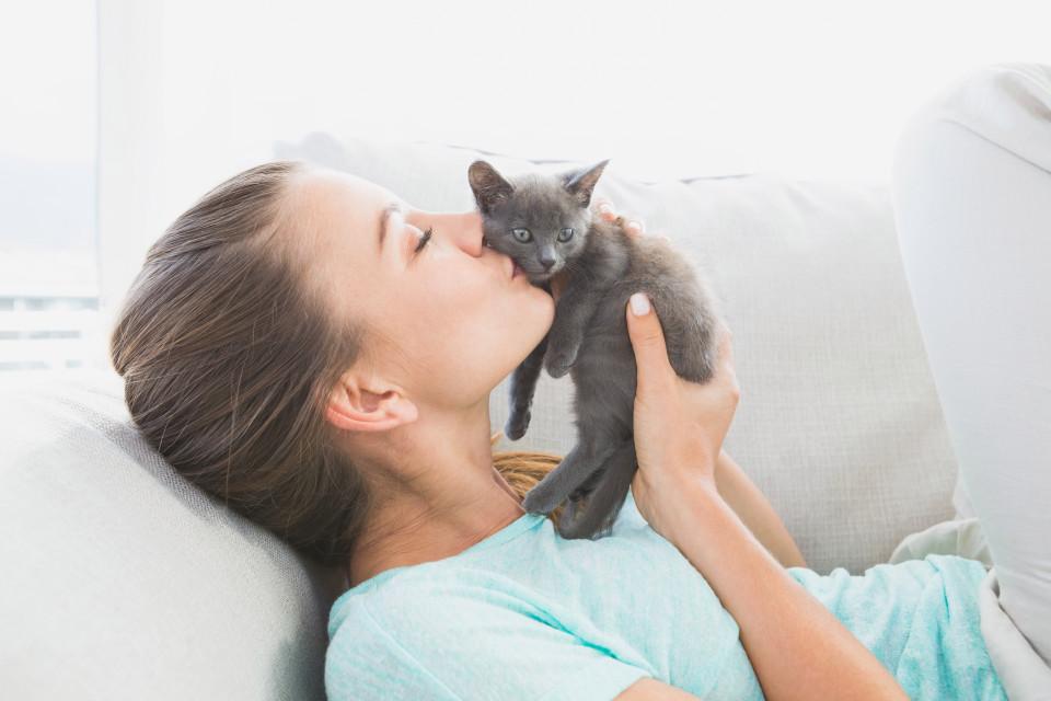Esta es la primera línea de cosméticos con olor a gato