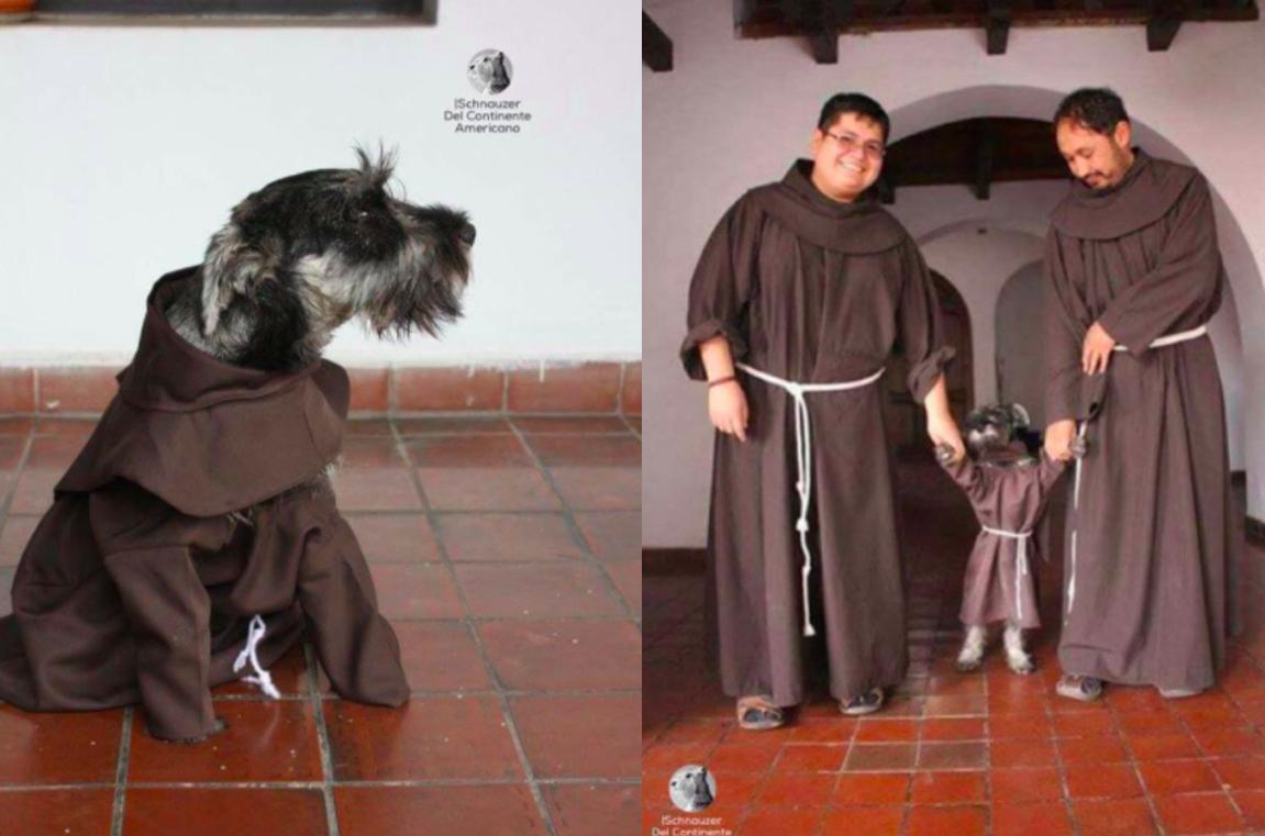 Conoce a Fray Bigotón, el perro-fraile de Bogotá