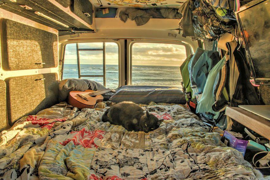 Este chico lo dejó todo para viajar por el mundo con su gata