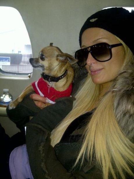 ¡Paris Hilton y las vacaciones de nunca acabar!